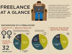 Amazing Freelancer Infographic
