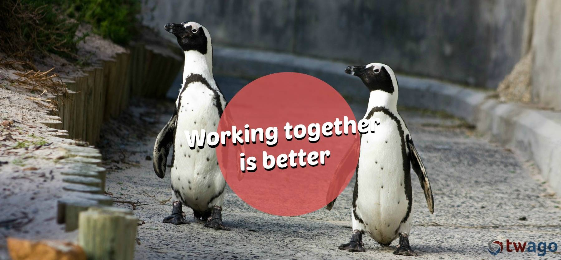 Working together is better on twago