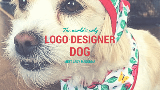 "Meet Lady Madonna: The World's Only Freelance Designer ""Dog"""