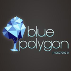 Blue Polygon - Modellage freelancer Colombia