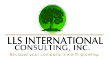 LLS International Consulting