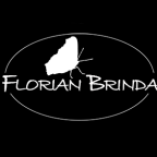 FlorianBrinda - Compositing freelancer Vienna