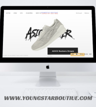 Online  Store Website