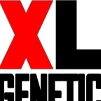 XL Genetic - Design Thinking freelancer Asturias