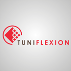 Tuniflexion - Six Sigma freelancer