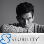 SEOBILITY - Google AdWords freelancer Minsk province