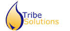 Tribe Solutions - .NET freelancer North holland