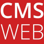 CMS Webagentur - Business Strategy freelancer Canton of zurich