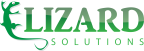 LizardSolutions - PostgreSQL freelancer Campania