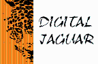 Digital Jaguar - Google AdWords freelancer State of mexico