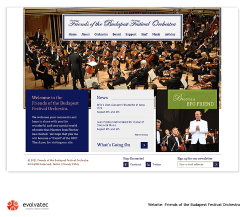 Website for Orchestra